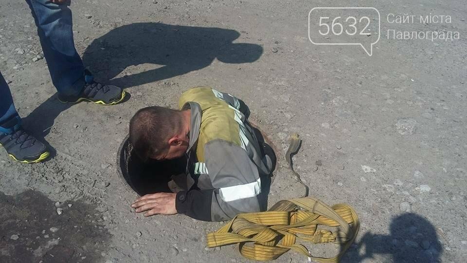 У Павлограді собака провалилася в двометровий люк, фото-2