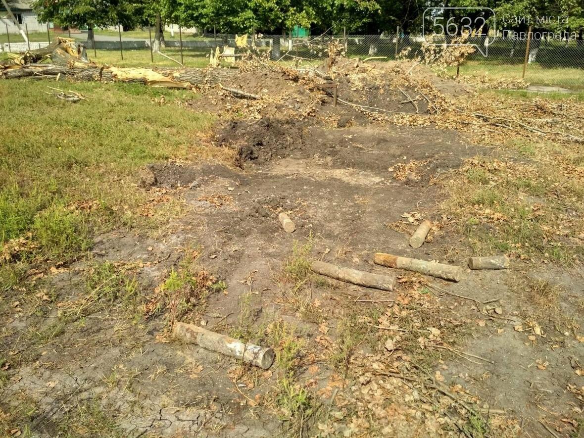 На Павлоградщині знайшли артилерійські снаряди, фото-2