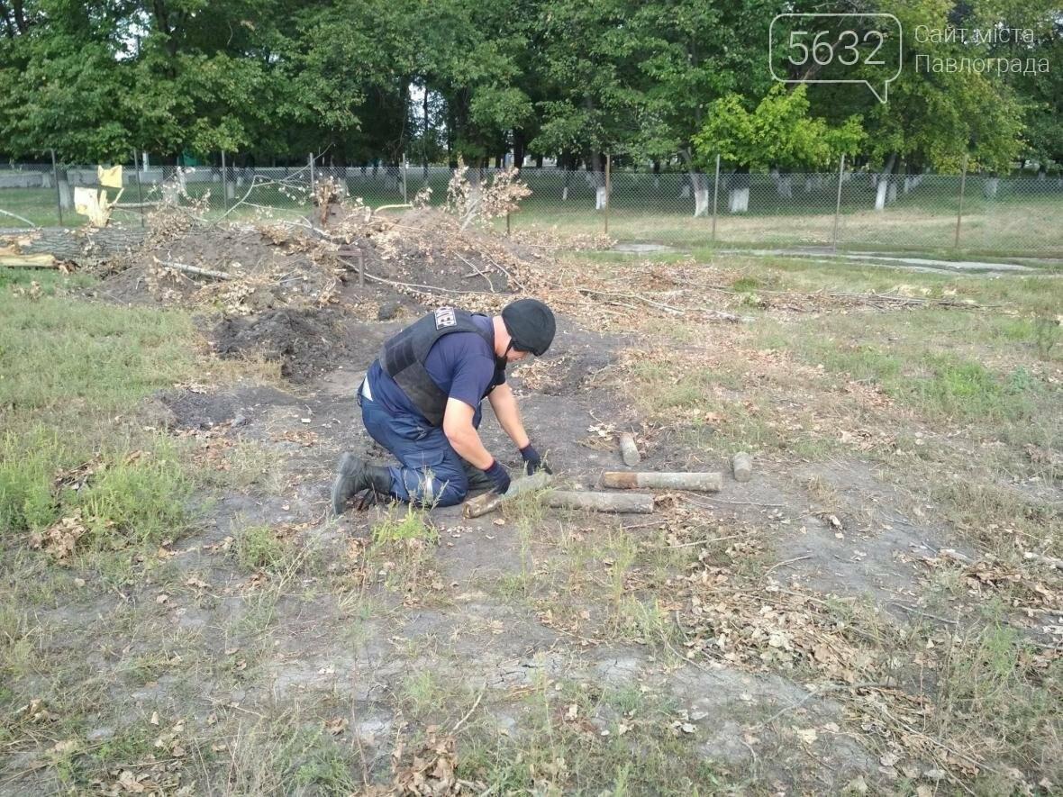 На Павлоградщині знайшли артилерійські снаряди, фото-1
