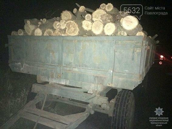 Поліцейські затримали чоловіка, який незаконно повирубував акації в лісосмузі , фото-1