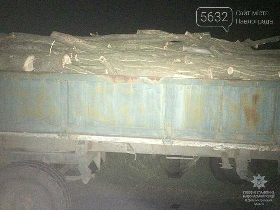 Поліцейські затримали чоловіка, який незаконно повирубував акації в лісосмузі , фото-2