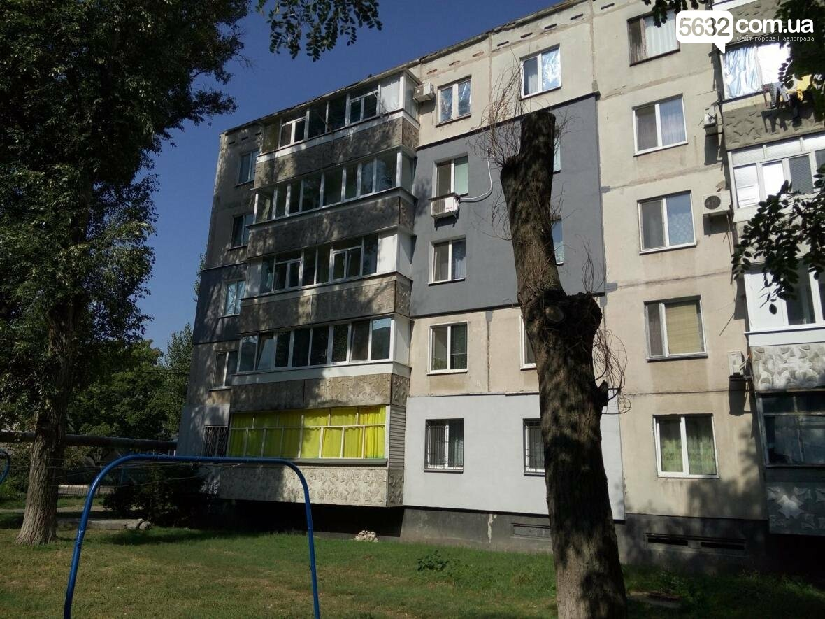 Жители Павлограда жалуются на варварскую обрезку деревьев, фото-3