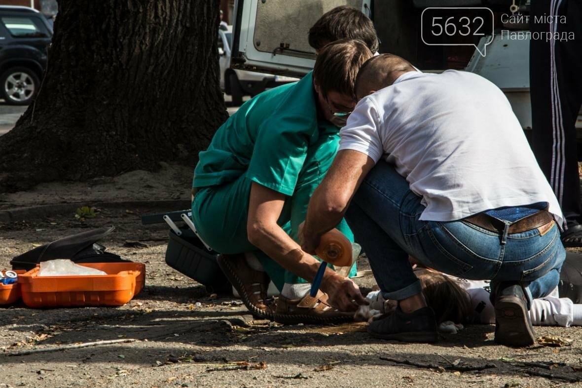 В Днепре упавшая ветка сухого дерева убила студентку, фото-2
