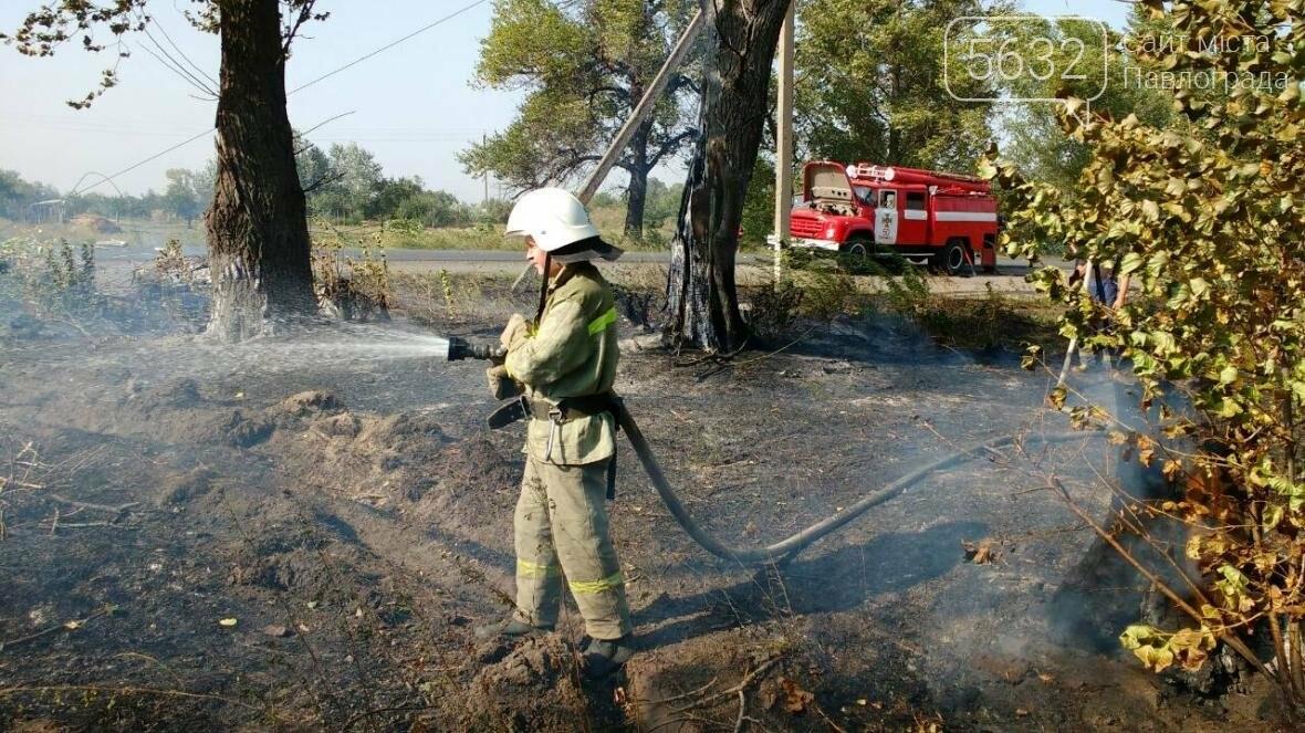 На Павлоградщині палаючий автомобіль призвів до пожежі в екосистемі, фото-3