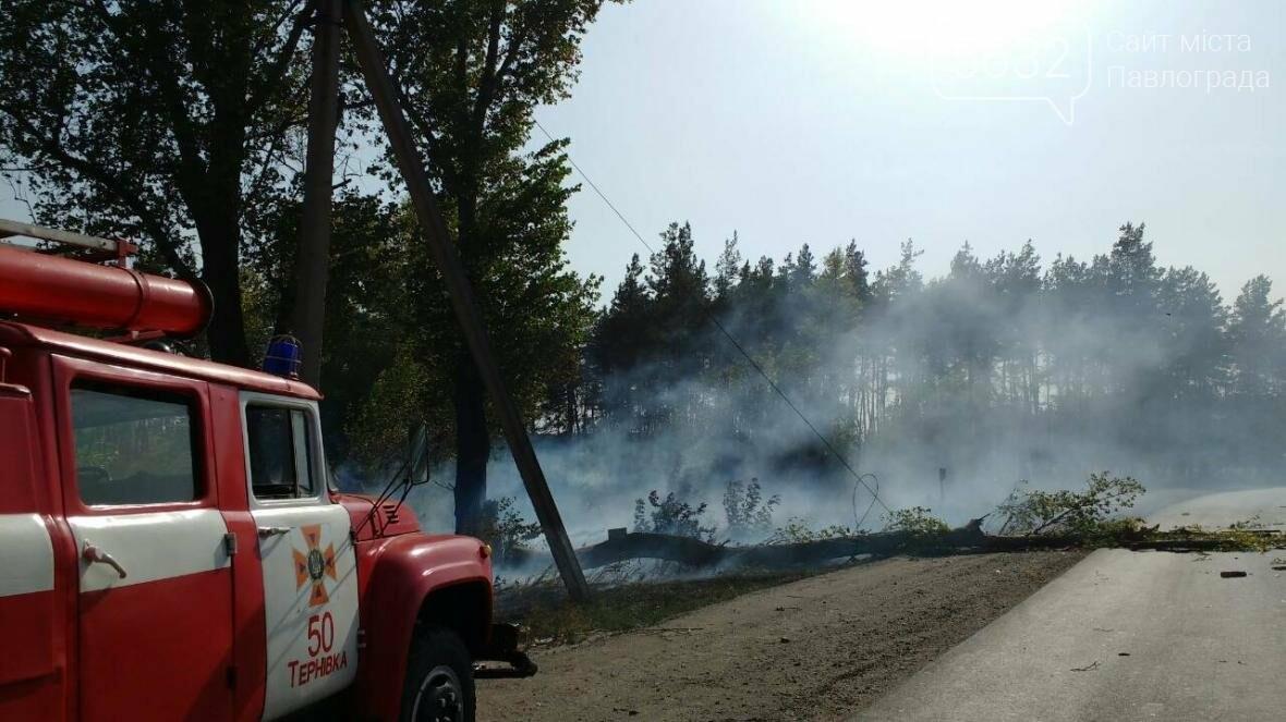 На Павлоградщині палаючий автомобіль призвів до пожежі в екосистемі, фото-1