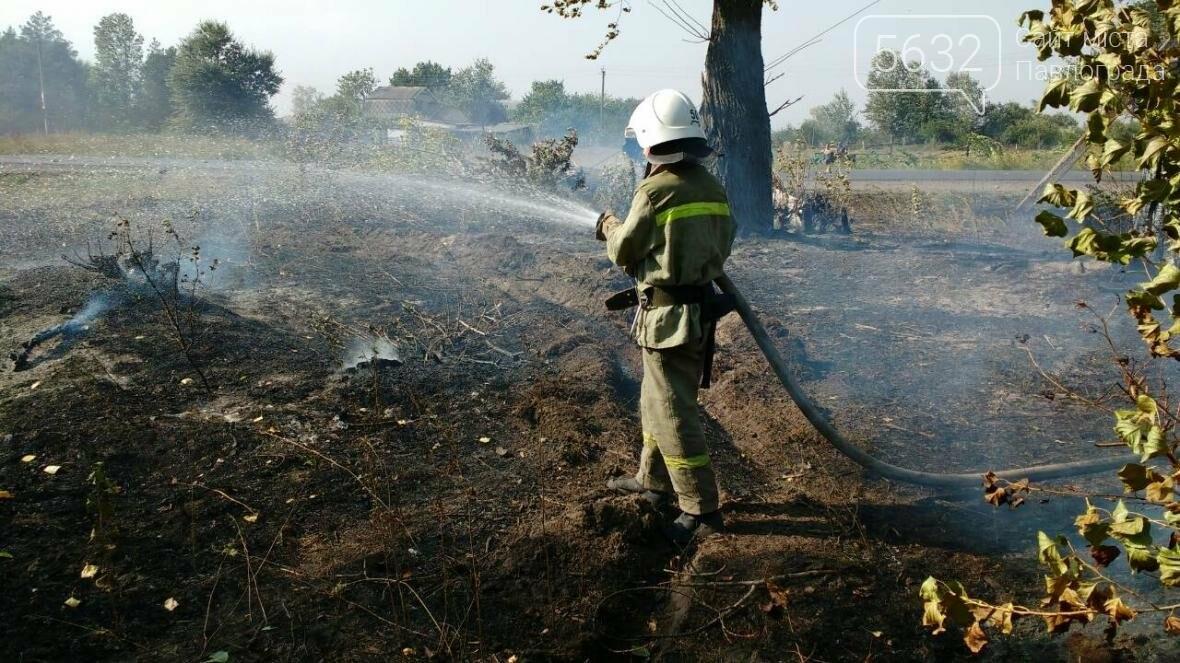 На Павлоградщині палаючий автомобіль призвів до пожежі в екосистемі, фото-2