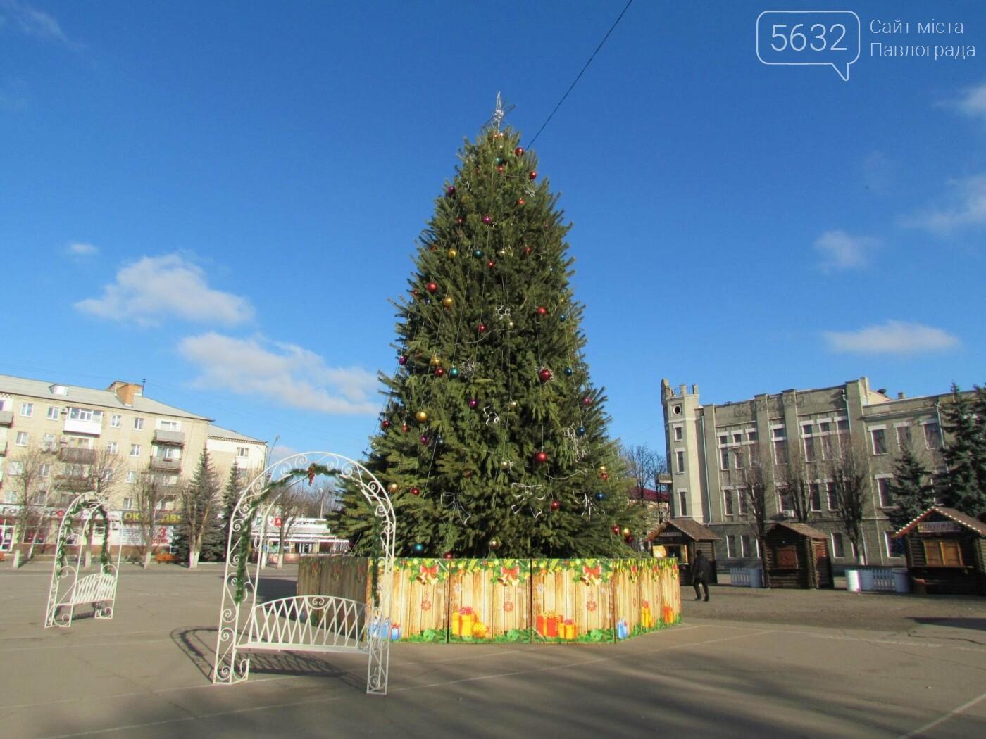 Павлоградцы попрощались с новогодней елкой, фото-4