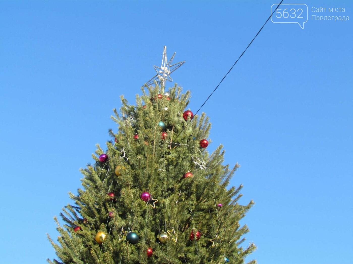 Павлоградцы попрощались с новогодней елкой, фото-8