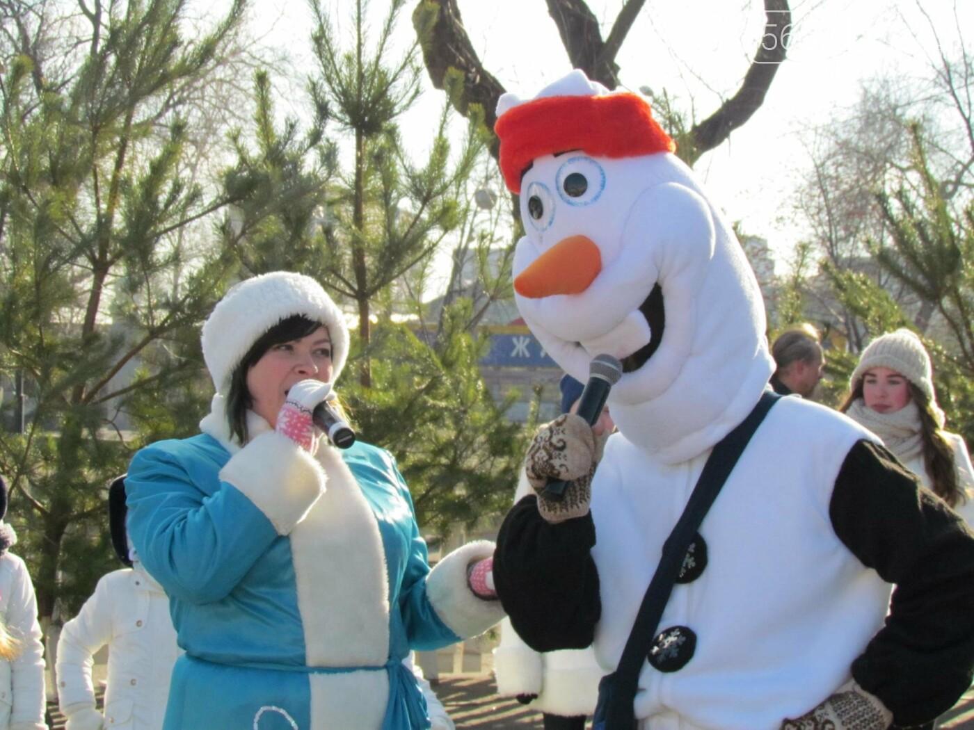 Павлоградцы попрощались с новогодней елкой, фото-1