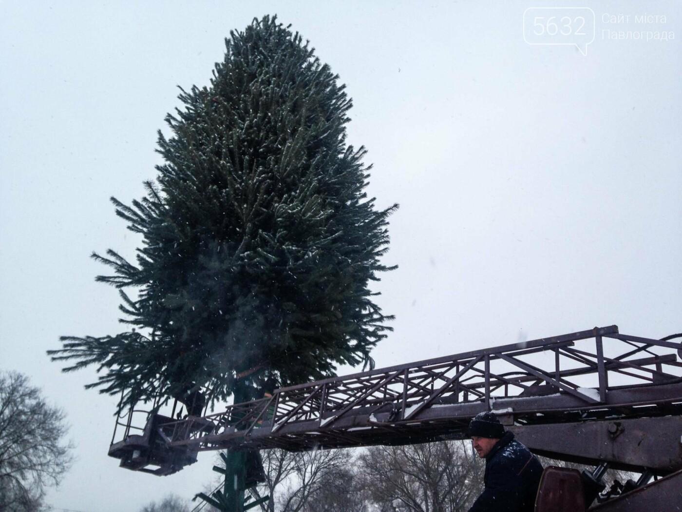 Свята закінчилися: у Павлограді розбирають ялинку, фото-7