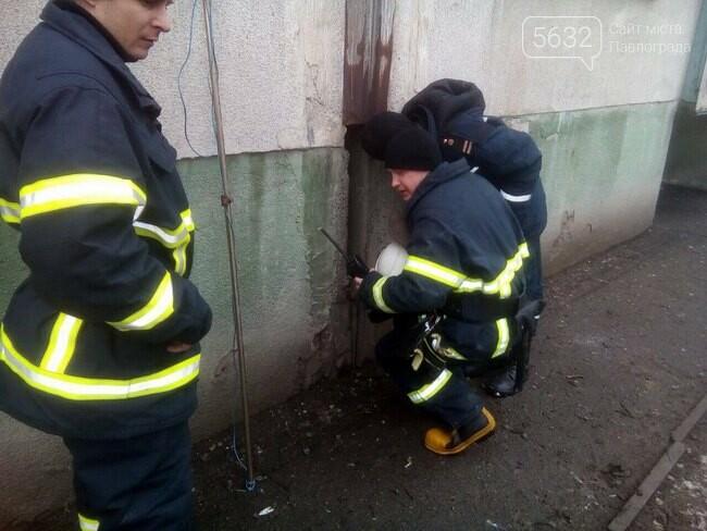 В Терновке спасатели вытащили застрявшую между домами собаку, фото-2
