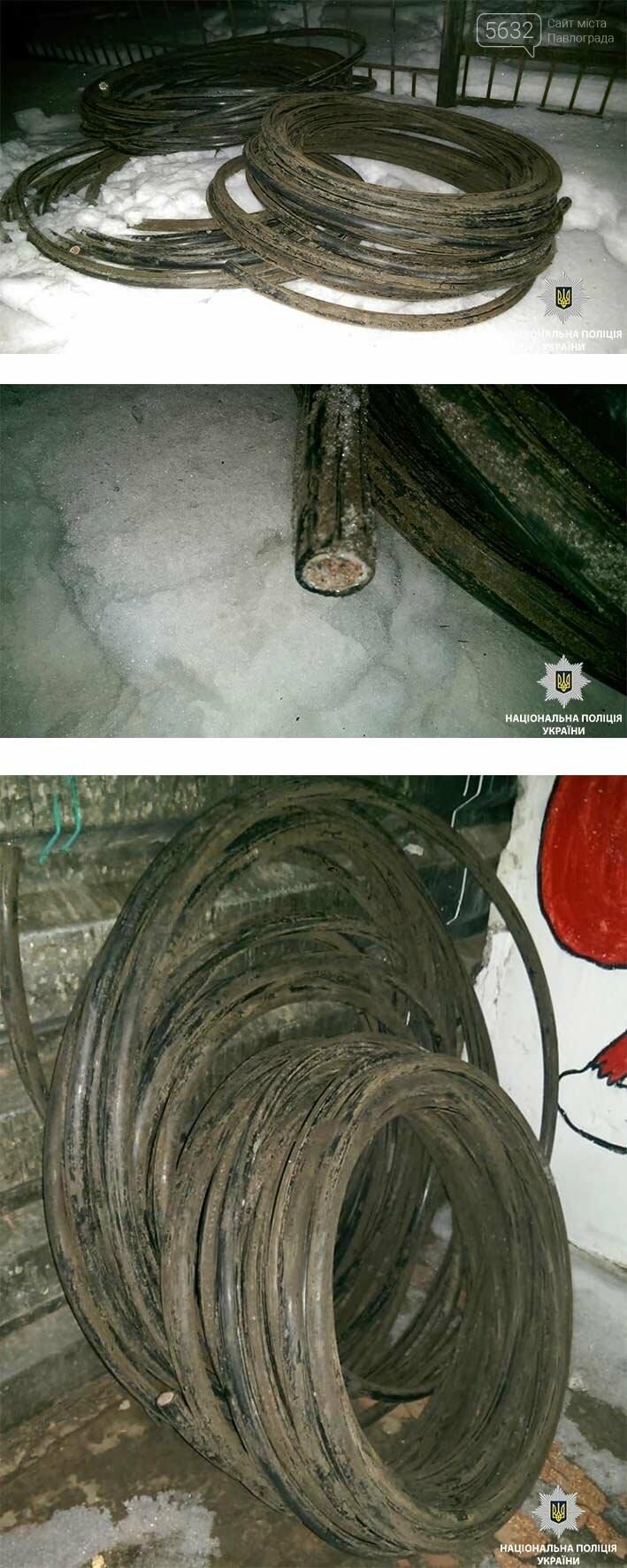 Павлоградські поліцеські затримали крадія кабелю, фото-1