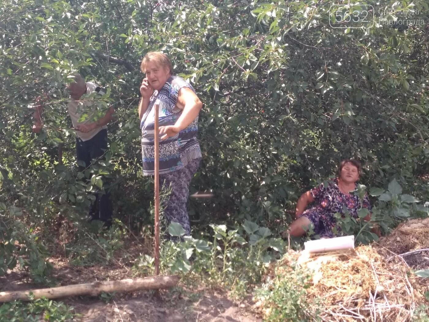В Богуславе местные жители 5 лет воюют за участок земли, фото-1
