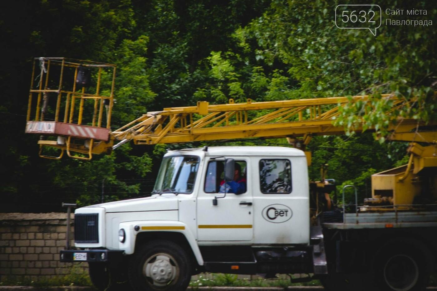В Павлограде активисты с коммунальщиками облагораживают сквер, фото-4