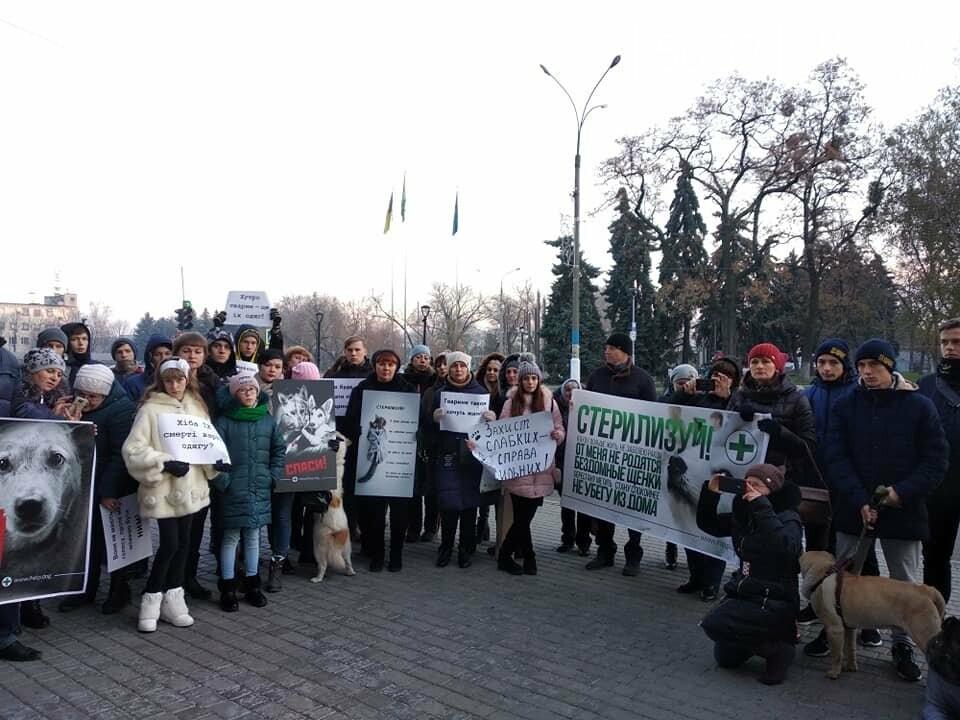 У Павлограді пройшов марш за права тварин, фото-2