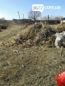 У Павлограді русло річки очищують від очерету та сміття, фото-2