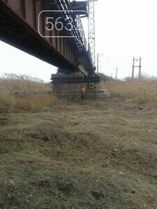 У Павлограді русло річки очищують від очерету та сміття, фото-4
