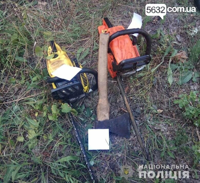 В Павлограді затримано чорних лісорубів