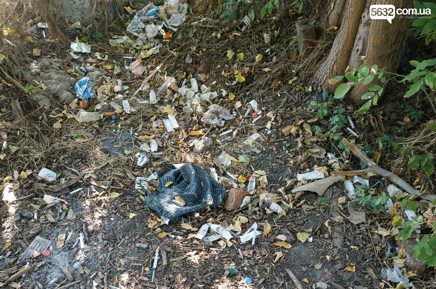 Свалка для мусора и «рассадник» наркомании: всё это в центре Павлограда, фото-3