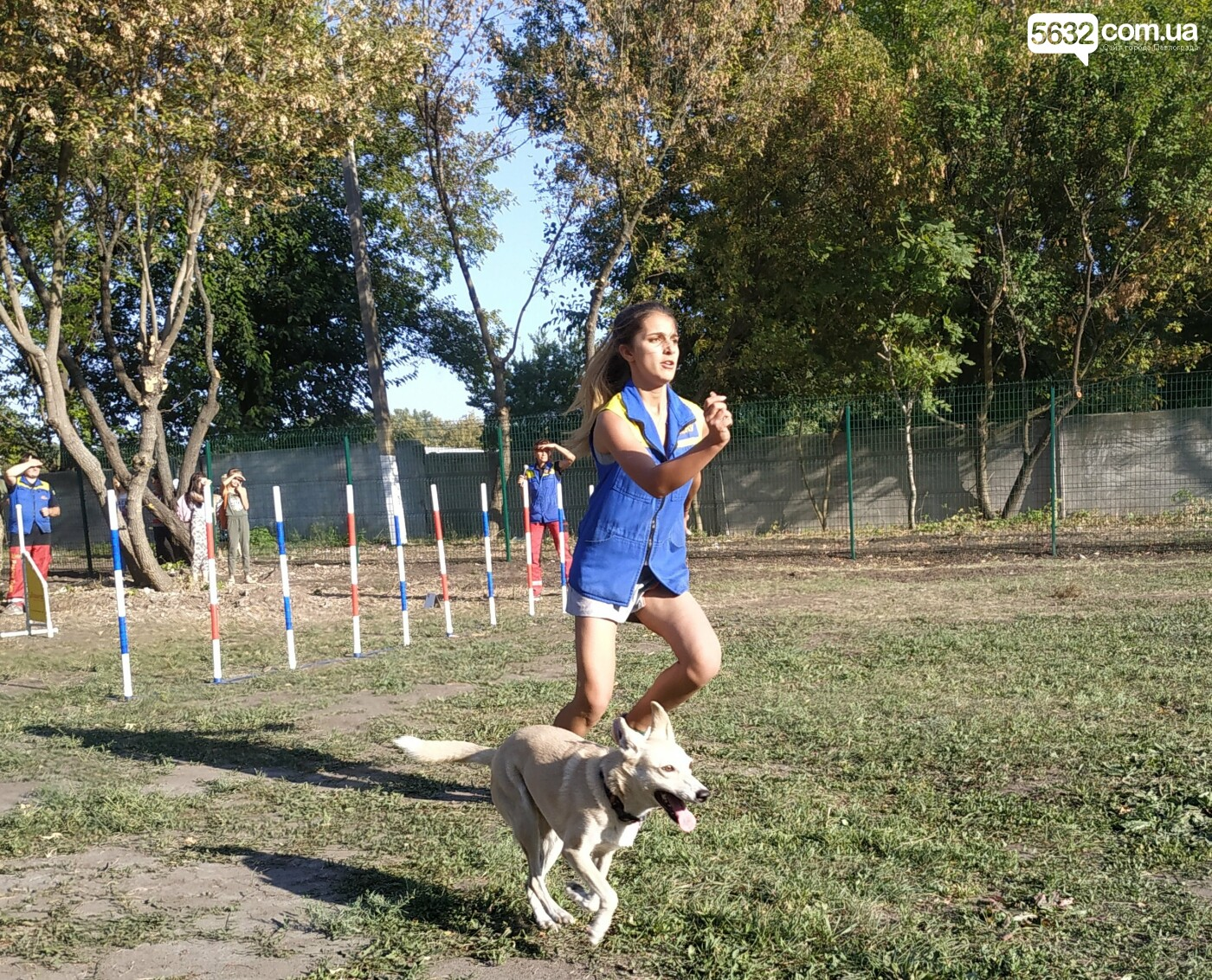 В Павлограде открылась площадка для спорта с собаками, фото-8