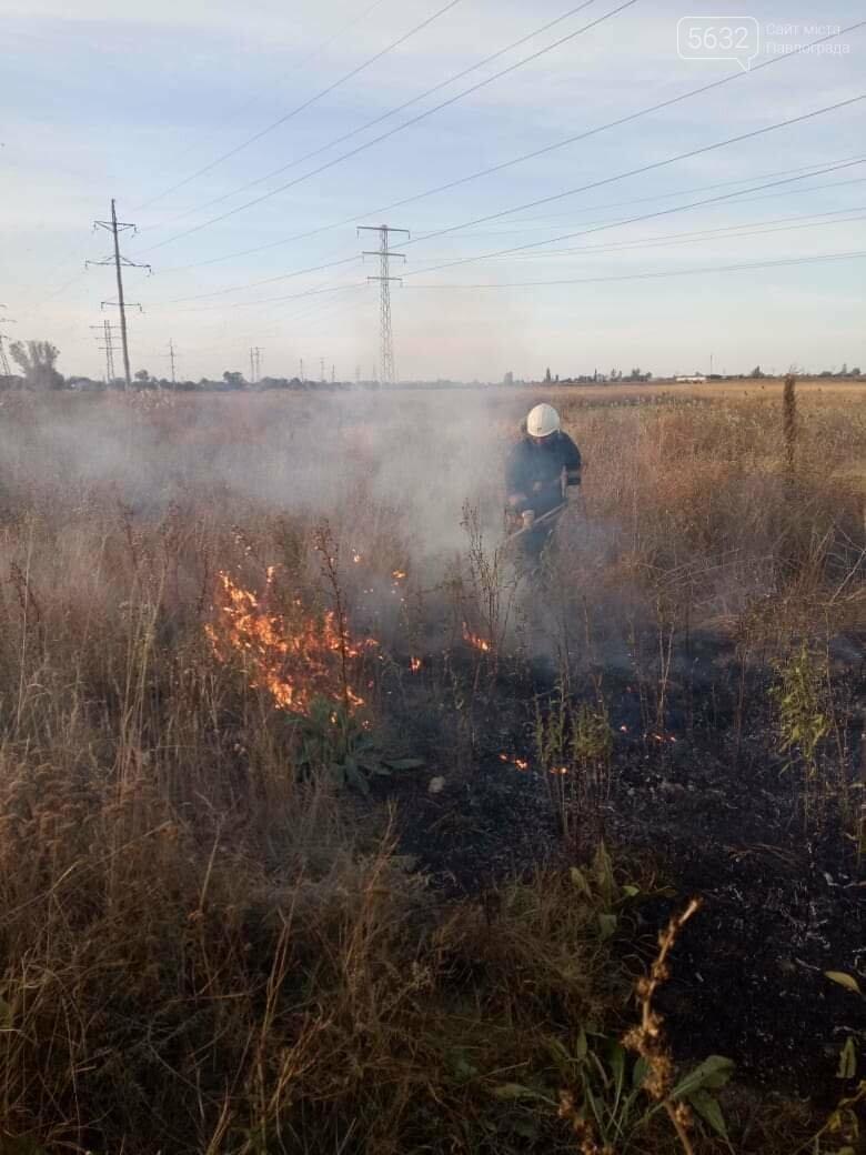 МНС-ники Павлограда б'ють тривогу з приводу спалювання сміття та сухостою, фото-1
