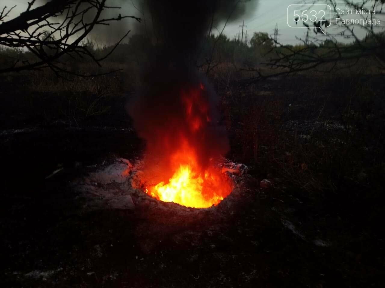 МНС-ники Павлограда б'ють тривогу з приводу спалювання сміття та сухостою, фото-2