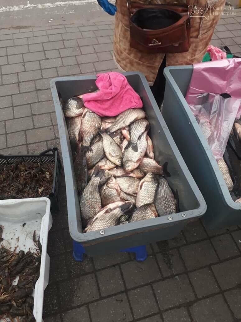Хороший «улов»: полицейские изъяли 84 кг рыбы и 7 кг раков, фото-2