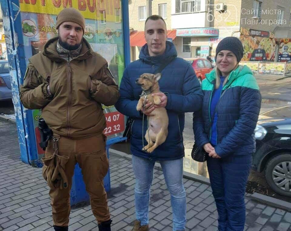 В Павлограде щенка освободили из ловушки, фото-3