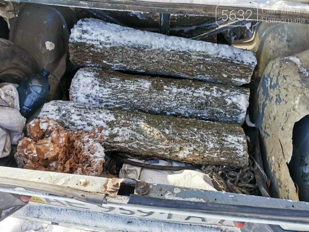 Житель Юрьевки незаконно спилил 3 дерева, фото-2