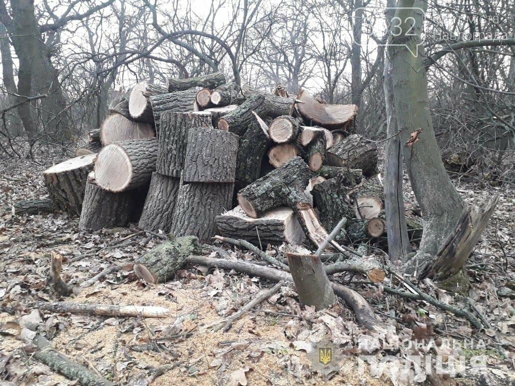 Ещё двух «чёрных лесорубов» задержали на Павлоградщине, фото-1