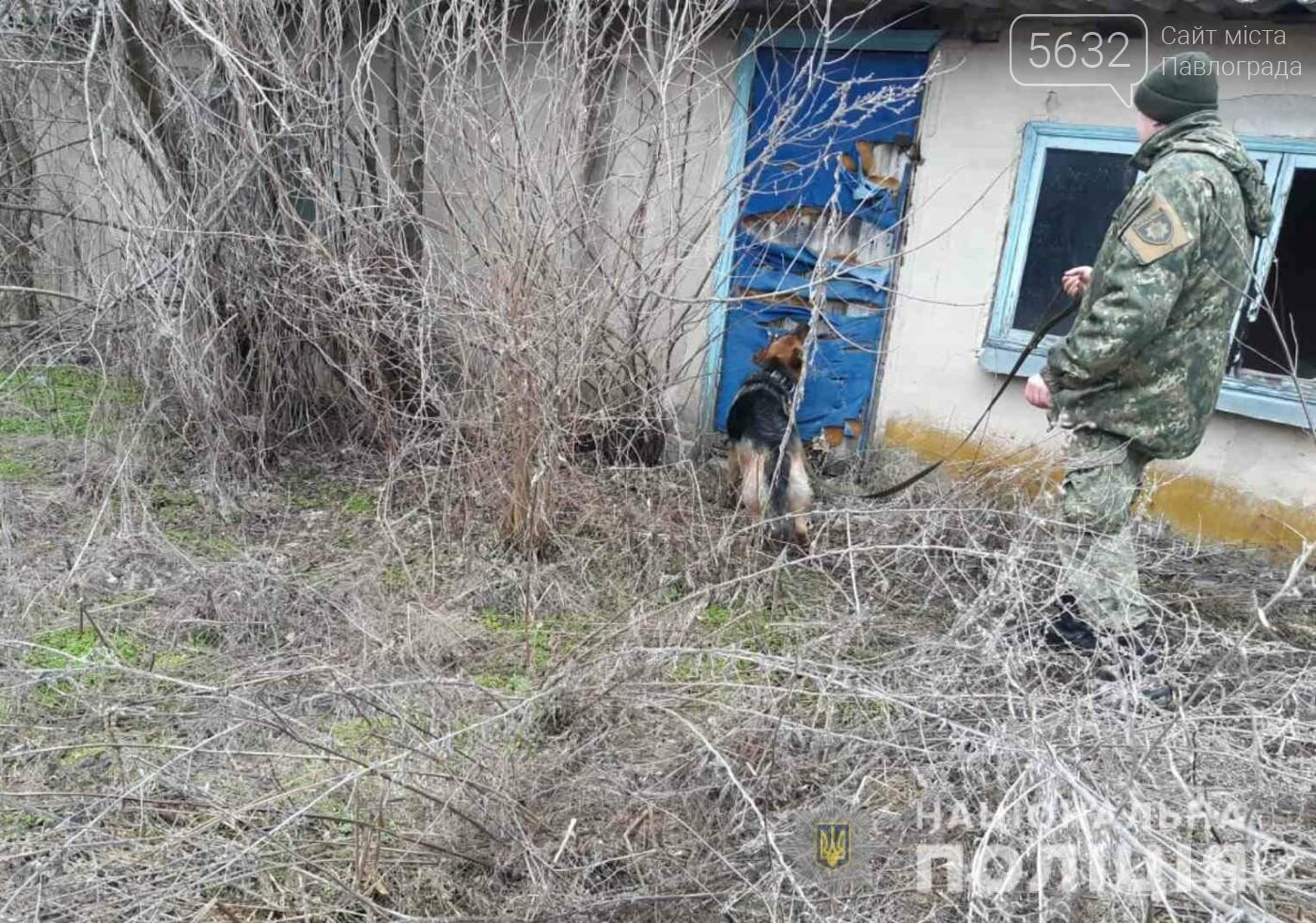 Служебный пёс отыскал пропавшего мальчика в Юрьевском районе, фото-1