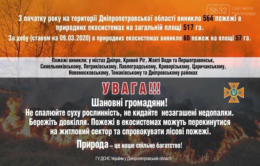 На Петропавловщине сгорел 1 га лесного массива, фото-1