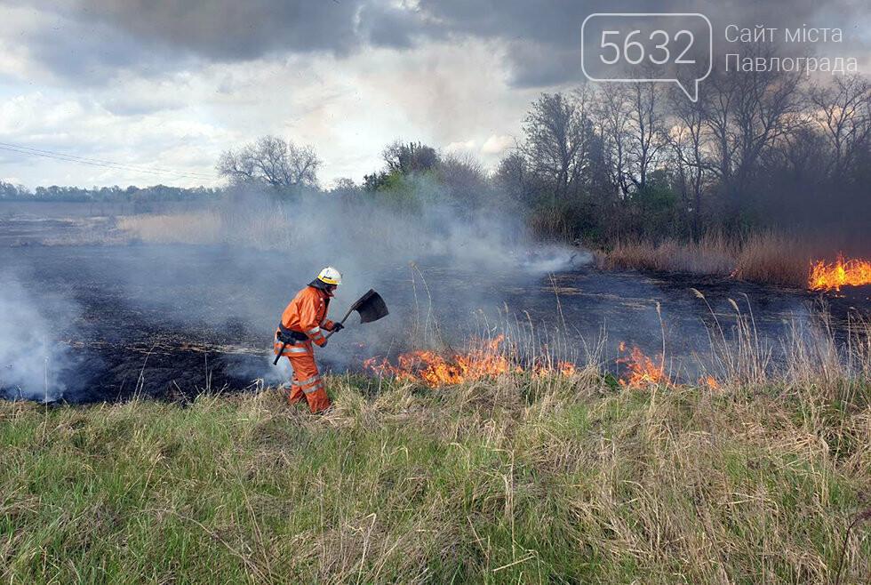 В Юрьевском районе выгорело 3 га сухой травы (ВИДЕО), фото-1