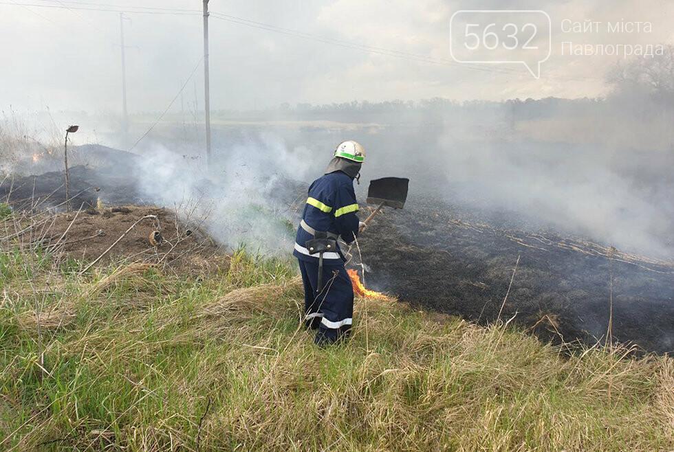 В Юрьевском районе выгорело 3 га сухой травы (ВИДЕО), фото-2