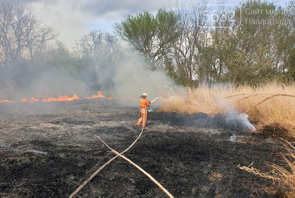 В Юрьевском районе выгорело 3 га сухой травы (ВИДЕО), фото-3