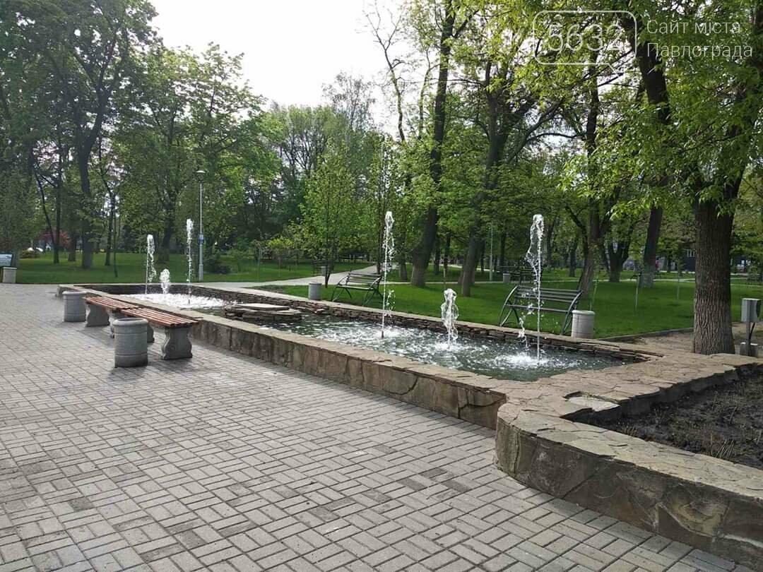 В Павлограде запустили фонтан возле Детского парка и высаживают декоративные цветы, фото-2