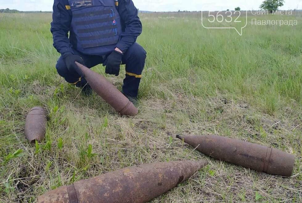 Неподалёку от села Приволчанское мужчина наткнулся в лесу на старую гранату, фото-2