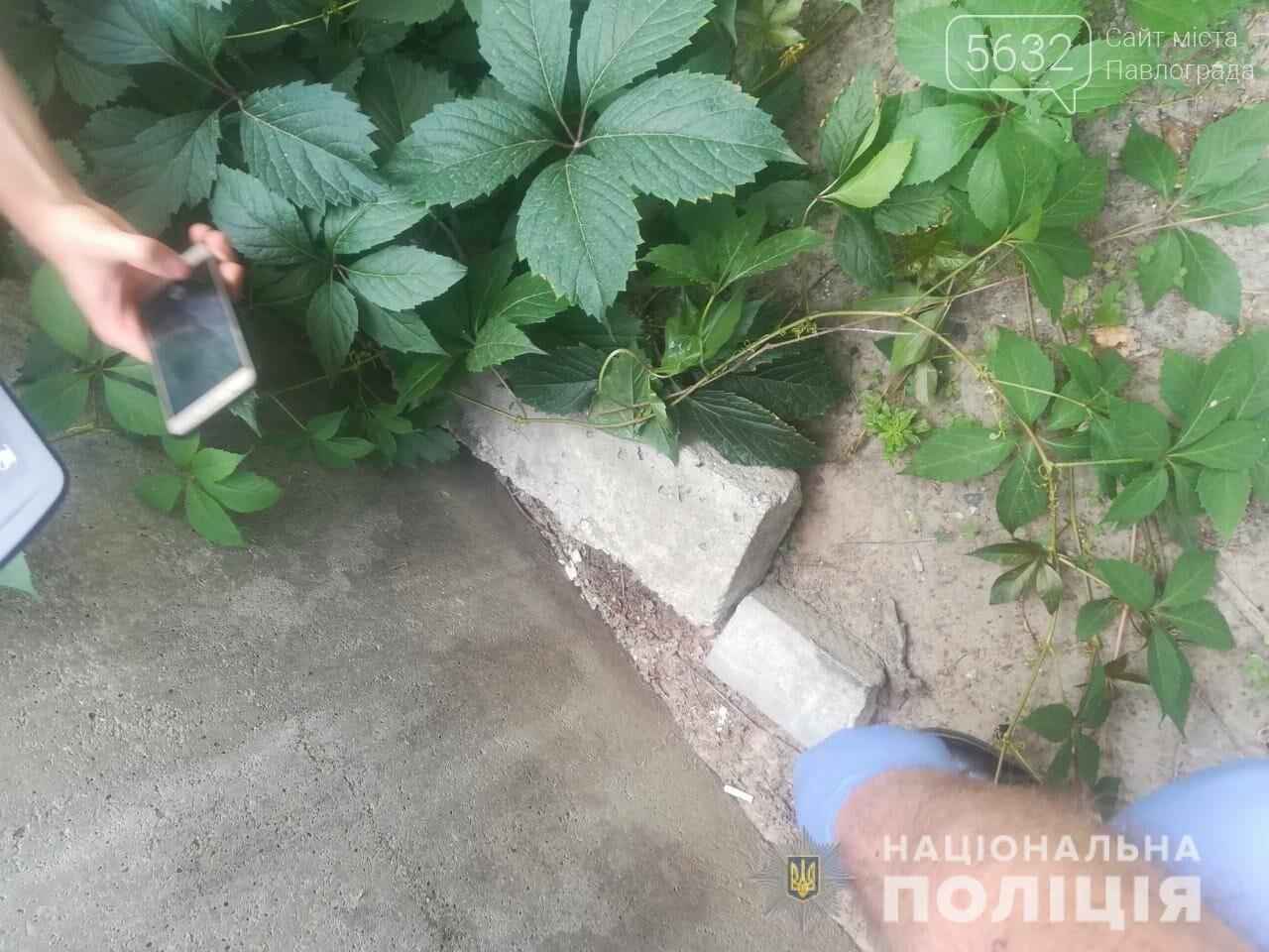 В Павлограде задержали закладчика наркотиков, фото-1