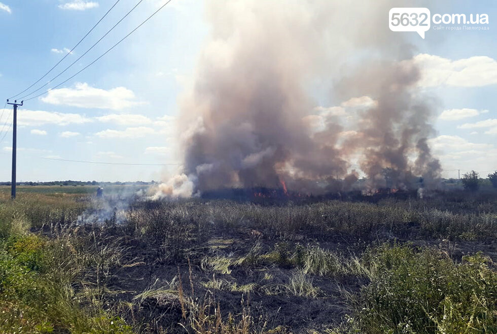За Богуславом горел сухостой: дым было видно издалека, фото-1