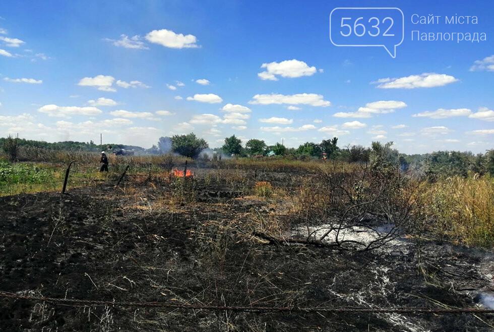 За Богуславом горел сухостой: дым было видно издалека, фото-2