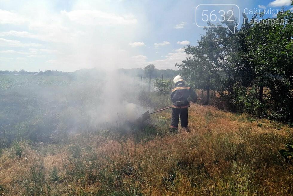 За Богуславом горел сухостой: дым было видно издалека, фото-3