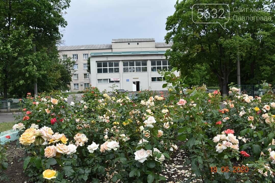 Городская больница Першотравенска пополнилась современным медицинским оборудованием, фото-1