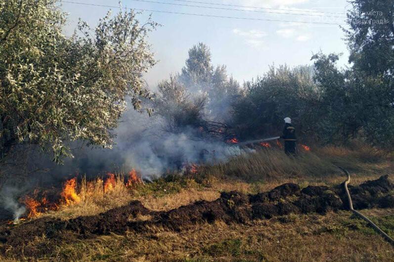 Уснул среди деревьев и чуть не сгорел: в Павлограде во время пожара спасли мужчину, фото-1