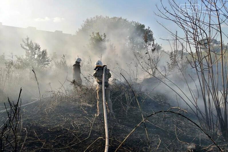 Уснул среди деревьев и чуть не сгорел: в Павлограде во время пожара спасли мужчину, фото-2