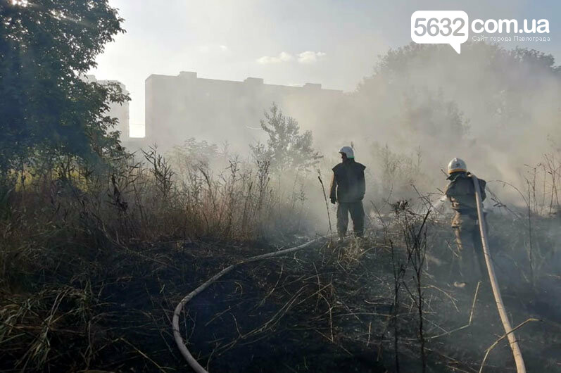 Уснул среди деревьев и чуть не сгорел: в Павлограде во время пожара спасли мужчину, фото-3