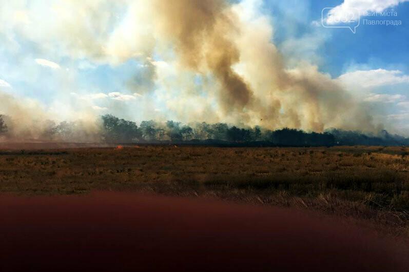 Число пожаров в экосистемах Западного Донбасса за год выросло почти в 2 раза, фото-2