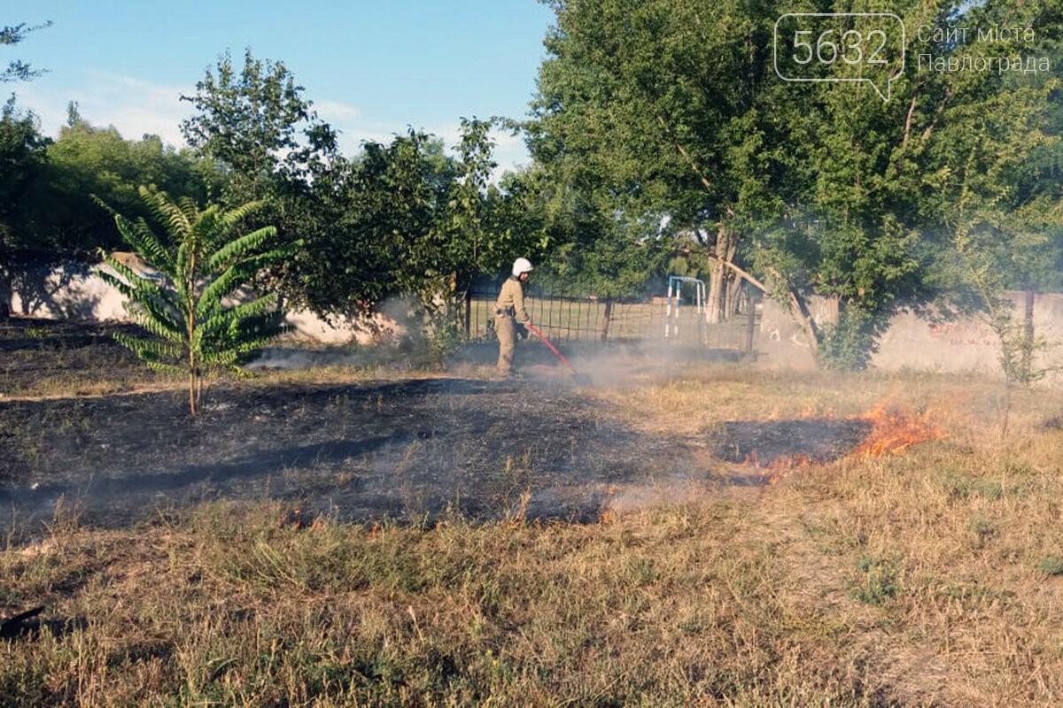 Число пожаров в экосистемах Западного Донбасса за год выросло почти в 2 раза, фото-3