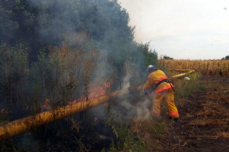 Число пожаров в экосистемах Западного Донбасса за год выросло почти в 2 раза, фото-1