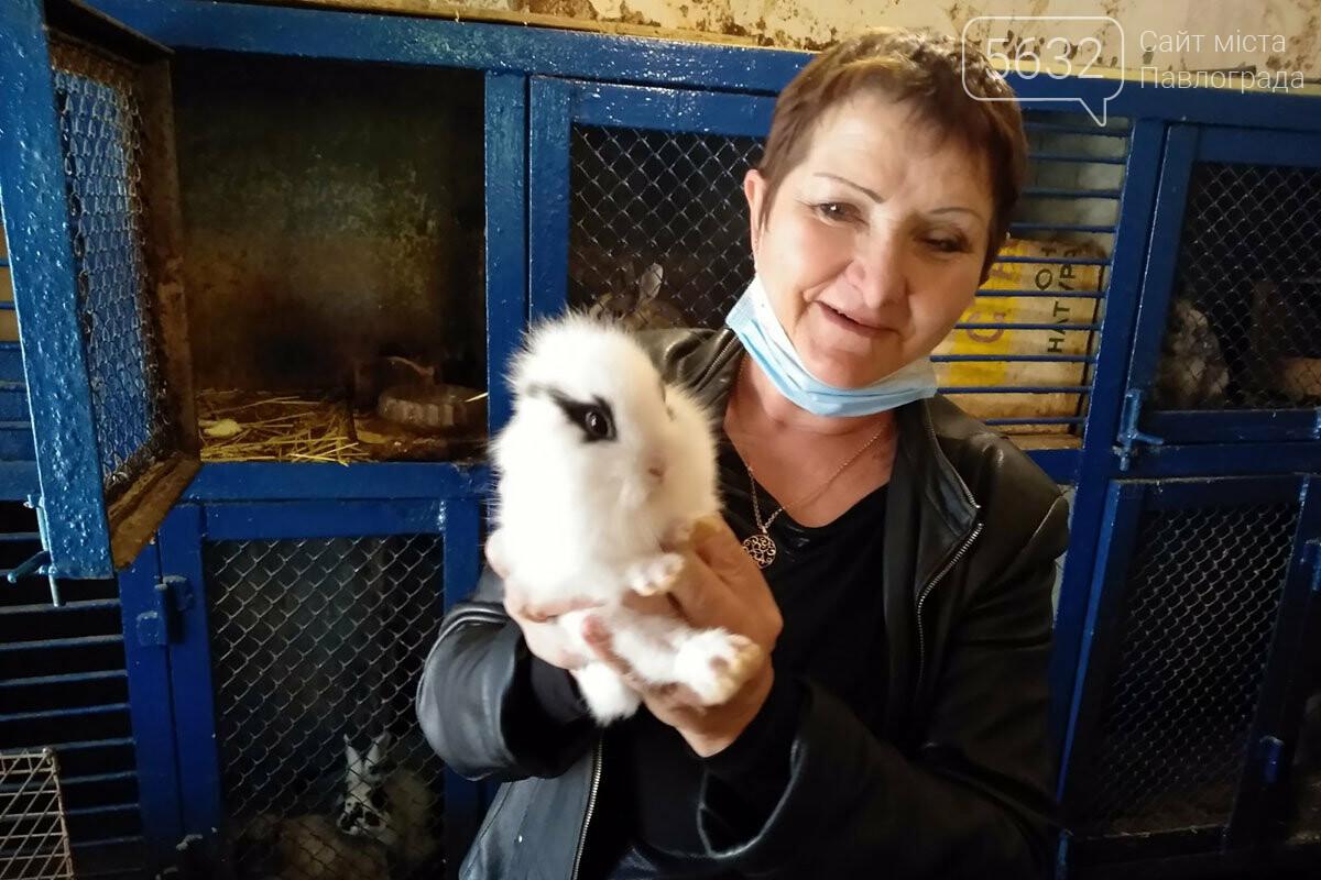 Павлоградские спасатели оригинально отметили День защиты животных, фото-2