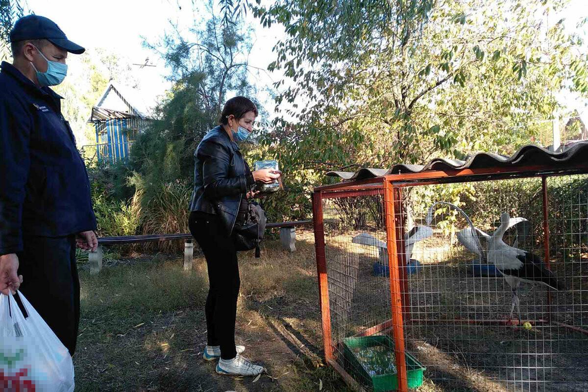 Павлоградские спасатели оригинально отметили День защиты животных, фото-3